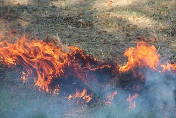 Archiefbeeld van een natuurbrand.