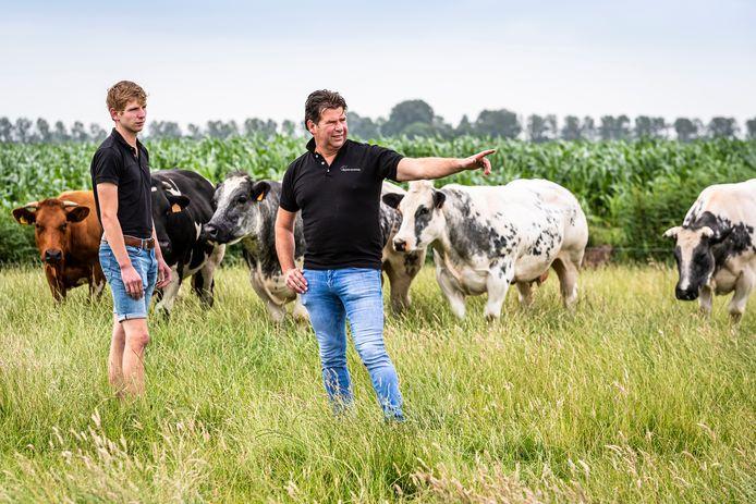 Veehandelaren Erik Rijling en Erik Rijling junior uit Woubrugge vrezen de toekomst, als de veestapel moet worden gehalveerd.