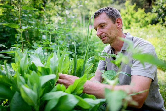 Martijn Aalbregt in zijn voedselbos.