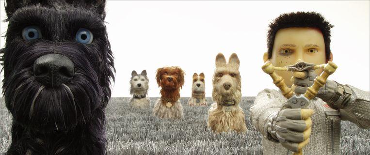 Een scène uit 'Isle of Dogs'. Beeld rv