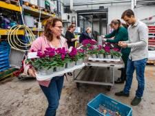 Bewoners wooncomplexen  verblijd met fleurige plantjes