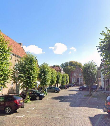 Extra voeding helpt bomen in Altena om 'plakkerige' bladluis van zich af te houden