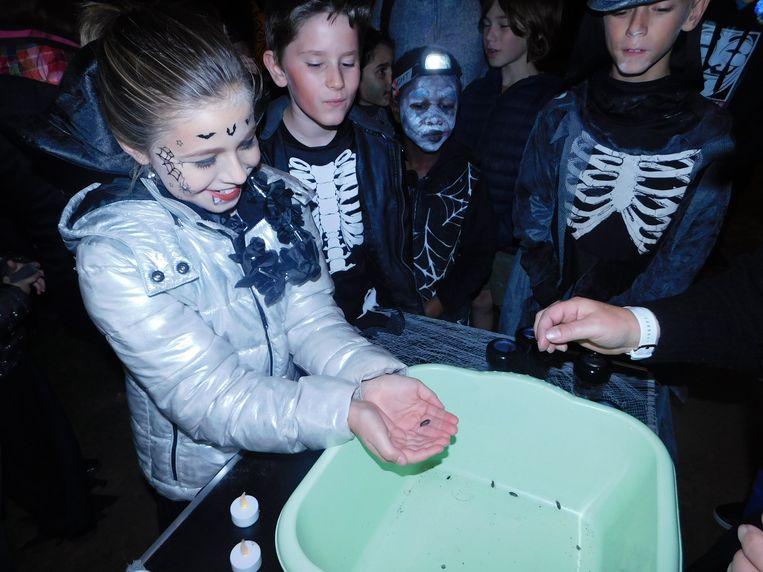 De Halloweentocht van basisschool De Rozen was met 450 deelnemers een succes.