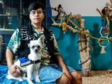Jason kan niet zonder hulphond-in-spé Bollie, maar kan opleiding niet betalen: 'Nodig bij paniekaanvallen'