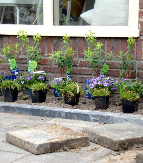 Tegelwippen: wie zijn tuintegels inlevert bij Tuincentrum Bull, koopt er goedkoop planten voor terug