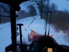 Strooiploeg Hilvarenbeek baant zich vlot een weg door de witte wereld