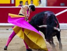 "Des manifestants ""en sang"" protestent contre la corrida"