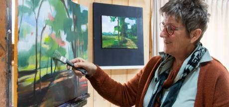 Overwinning voor Bavelse schilder Joke Oomen: realistisch met abstracte details