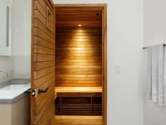 2 twintigers stelen sauna van hun verhuurder: 10 maanden cel