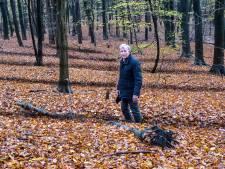 Theo Giesbers vreest dat 'gribbewald' in Groesbeek verdwijnt door vernieling machines Staatsbosbeheer