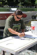 Jamie Holt telt en meet de dode zalm in de Klamath-rivier.