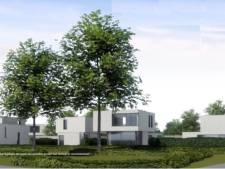 Losser krijgt nieuw woonwijkje aan rand van Dinkeldal