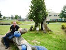 Omgewaaide Hengelose eik krijgt tweede leven als kunstwerk in Watertorenpark