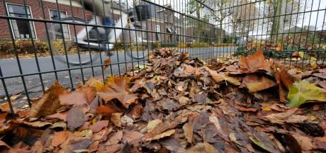 In Delden en omstreken is niet iederéén blij met de 'bladworst' in perkjes