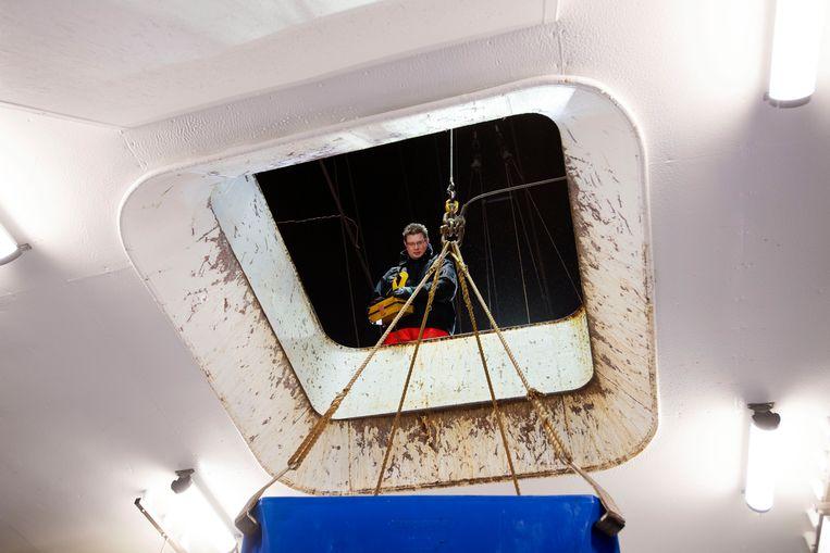 Schipper Cor Vonk van de TX1 lost inde haven van Den Helder zijn vis. Beeld Olaf Kraak