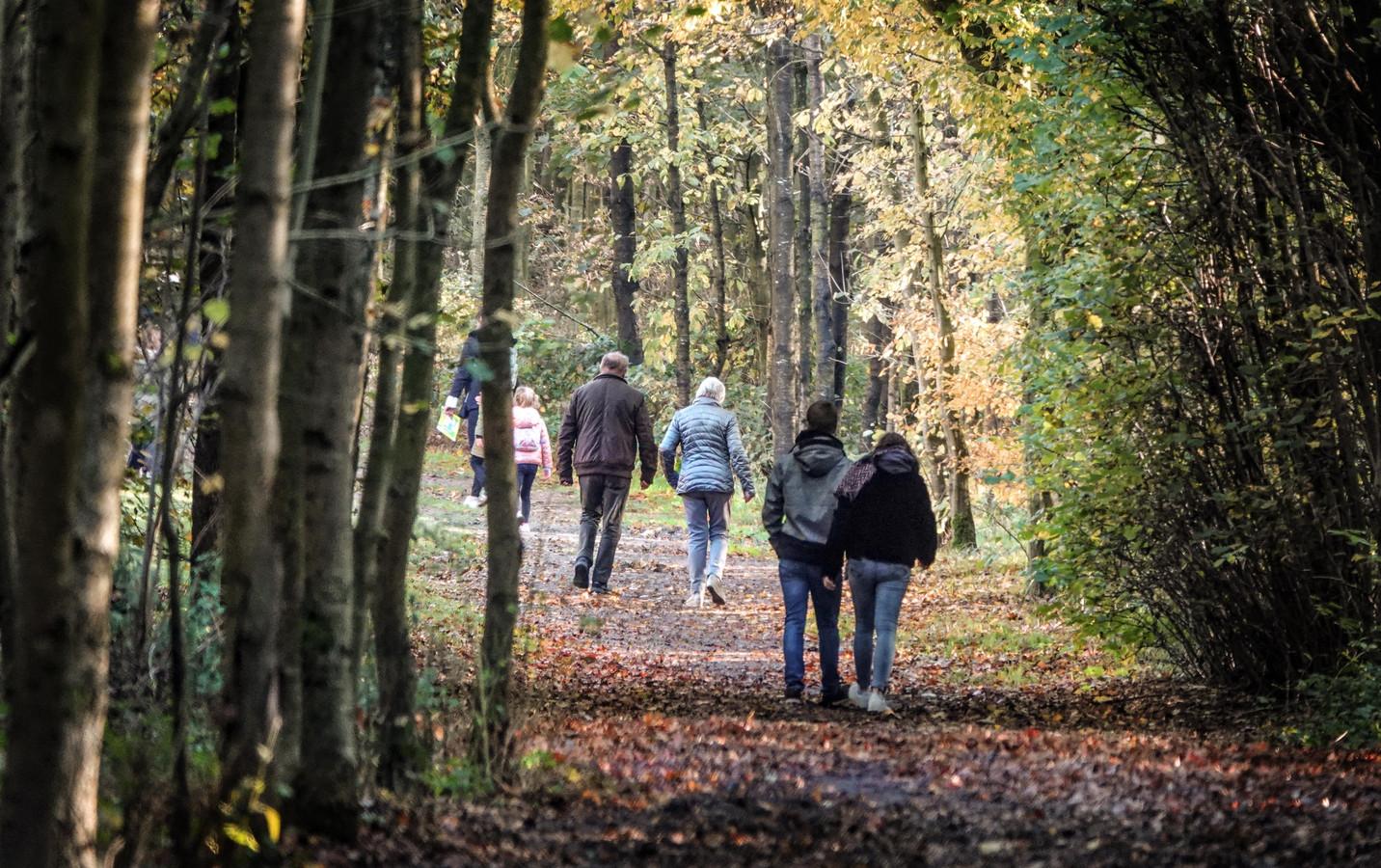 De wandelingen gaan onder meer door het provinciaal domein De Palingbeek.