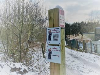 Theaterwandeling 'De vos… in het bos' opnieuw open na vernielingen