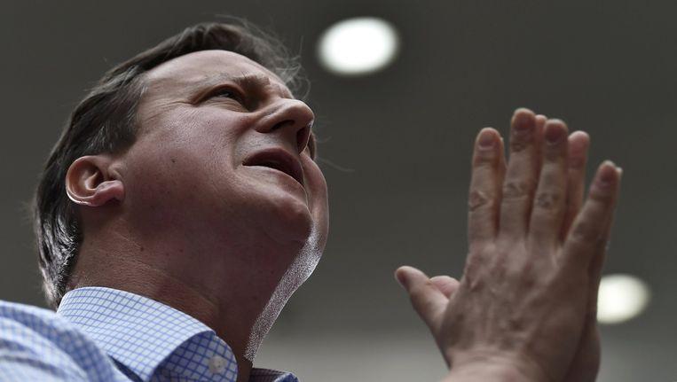 David Cameron van de Conservative Party. Beeld afp