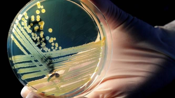 Verenigde Naties binden strijd aan met superbacteriën