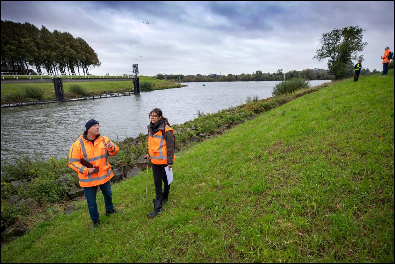 Nieuwegein-Zuid, 6 oktober 2020. Dijkwachters controleren de Lekdijk om te zien of die nog wel stevig genoeg is om de Randstad en Utrecht te beschermen.