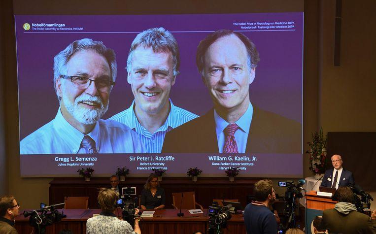 Gregg Semenza (links), Peter Ratcliffe (midden) en William Kaelin (rechts) zijn de winnaars. Beeld AFP