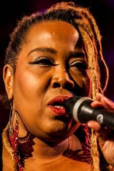 Delft in de ban van bluesfestival: 'Zoveel grote namen, zo gaaf!'