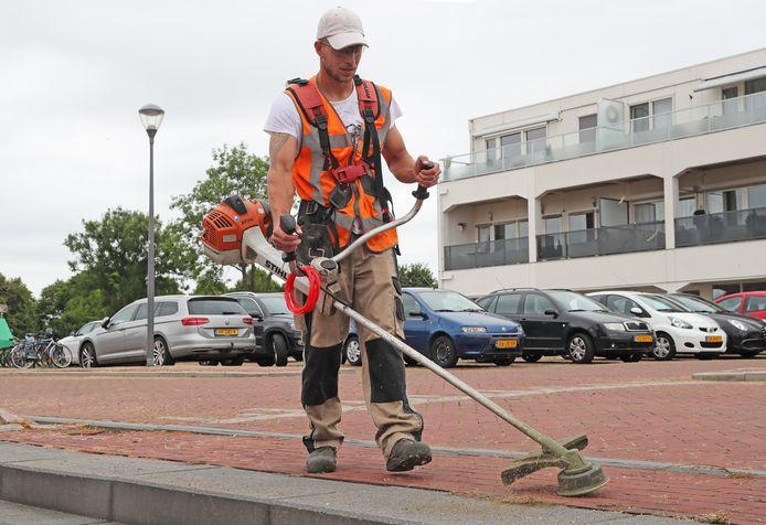 Medewerkers van het groenbedrijf dat door de gemeente Hellevoetsluis wordt ingehuurd, hebben de grootste moeite om het onkruid weg te krijgen.