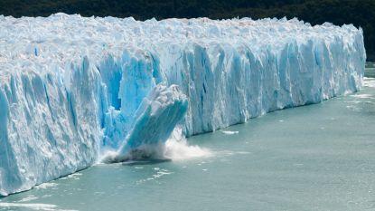 Nic Balthazar in Biekorf over klimaatverandering