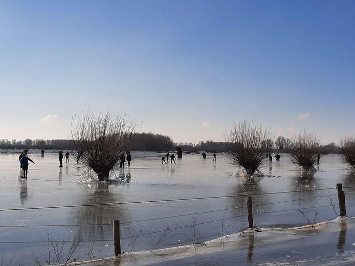 Schaatsers op de ondergelopen uiterwaarden langs de Veerweg in Wageningen.