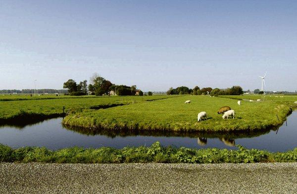 75 procent bodem Zuid-Holland zakt weg: provincie zoekt naar oplossingen