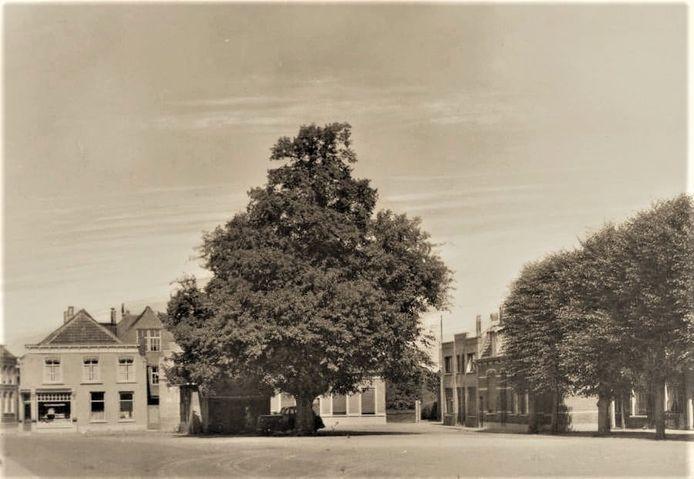 De oude lindeboom was een bevrijdingsboom die in de Franse tijd was geplant. Tijdens de novemberstorm van 1975 sneuvelde de linde en werd een nieuwe geplant.