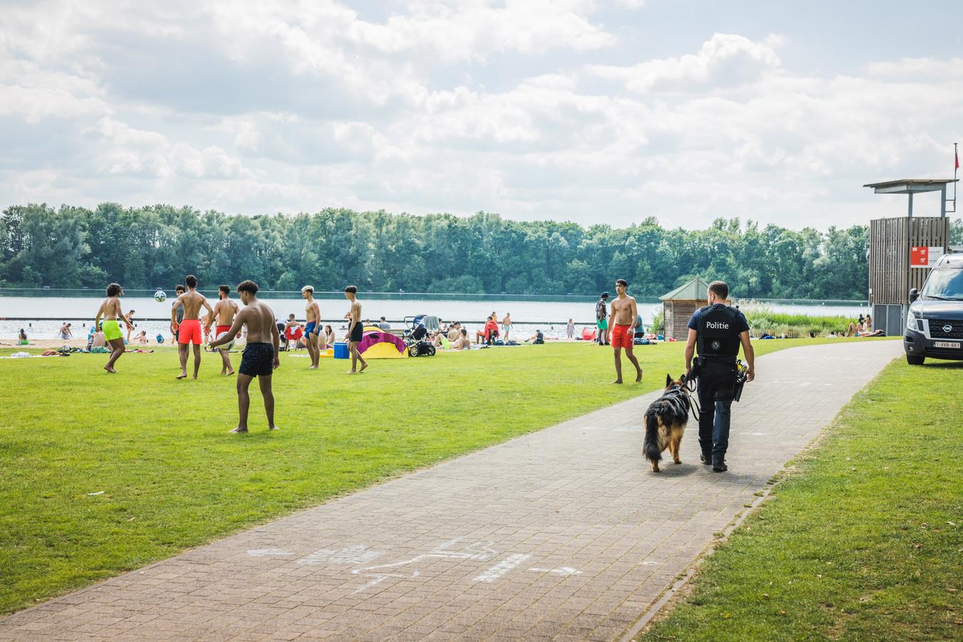 De politie was donderdag al op de Blaarmeersen aanwezig met hondenpatrouilles