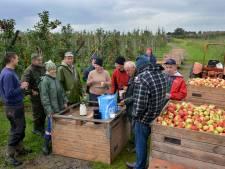 Etten-Leur heeft te weinig ambtenaren om bestemmingsplan op tijd af te ronden