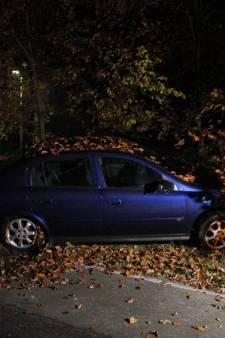 Automobilist knalt in Ermelo tegen boom en verdwijnt daarna spoorloos