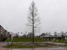 Ondanks alle coronaperikelen gaat eeuw-show Veldhoven toch door