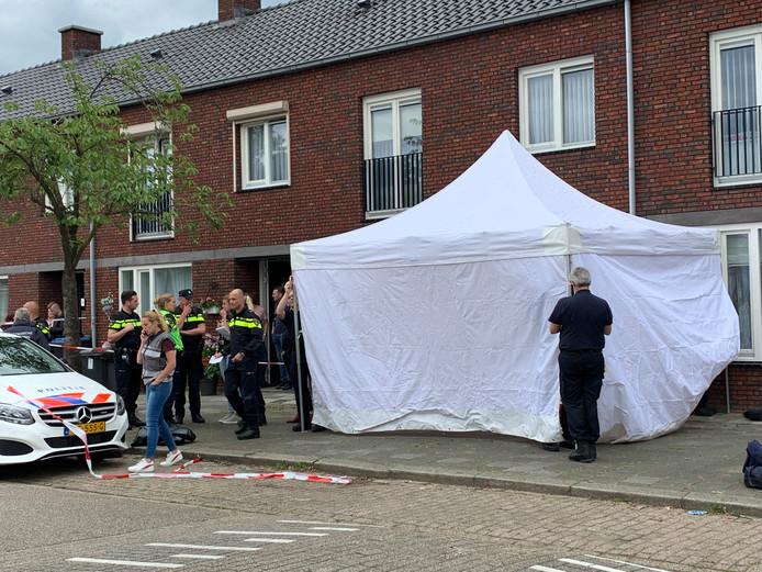 Steekpartij in Den Bosch