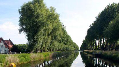 Aanleg tijdelijke dam in Damse Vaart gestart