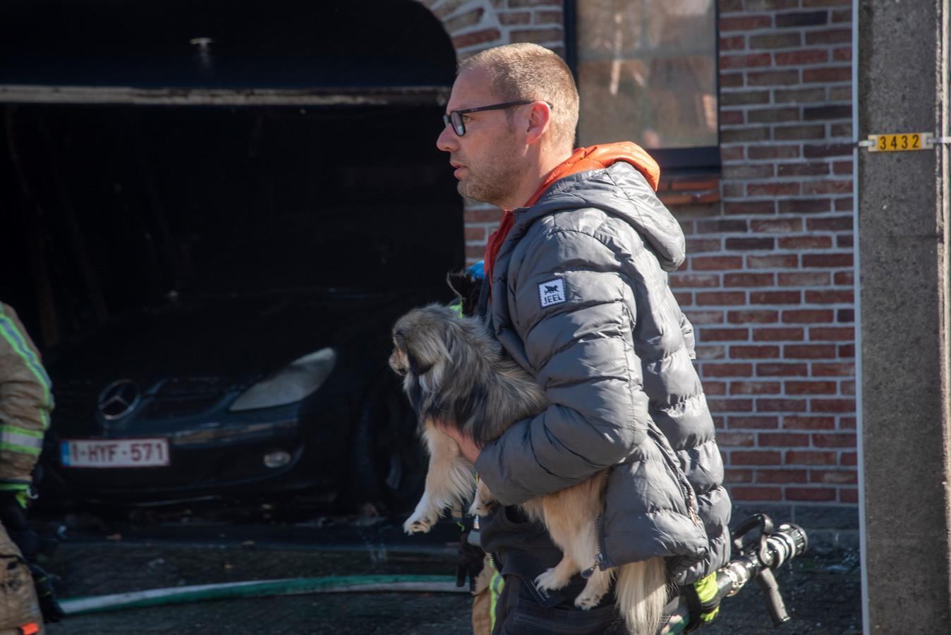 De hondjes van de bewoner bleven ongedeerd.