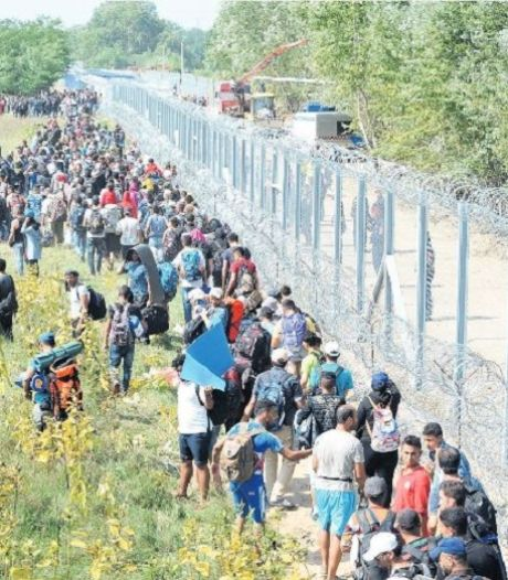 Hongaars prikkeldraad remt vluchtelingenstroom