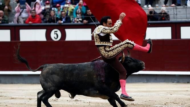 """Spaanse stierenvechters mogen weer voor publiek optreden: """"We willen geld inzamelen voor hele sector"""""""