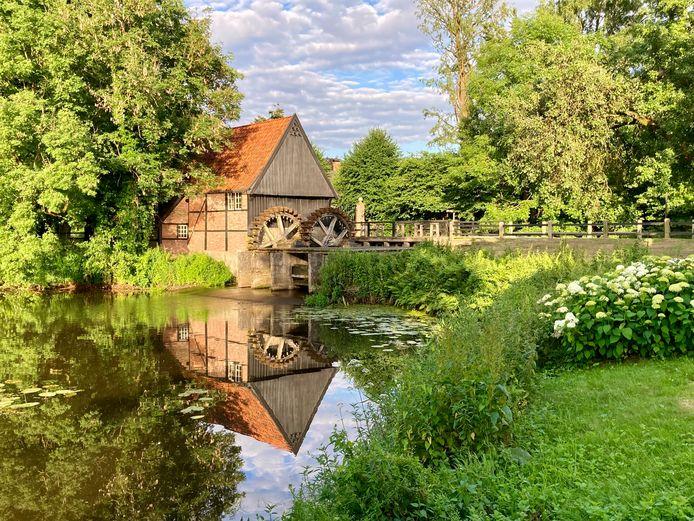 De watermolen van Lage, badend in de avondzon. De molen, die een eerste vermelding kreeg in 1270, heeft nu zijn eigen Facebookpagina met 5000 vrienden.