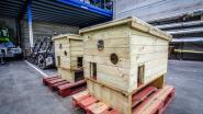 Diksmuide plaatst eerstdaags schuilhok in stadspark voor zwerfkatten