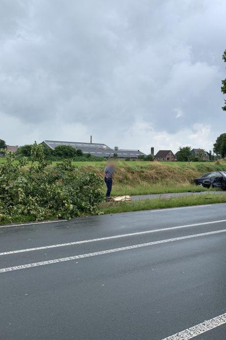 Automobilist rijdt boom doormidden bij Ulft
