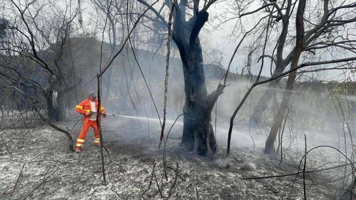 Brandweerlieden tijdens bluswerkzaamheden aan een brandend vuur in de gemeente Scano di Montiferro, in de provincie Oristano.