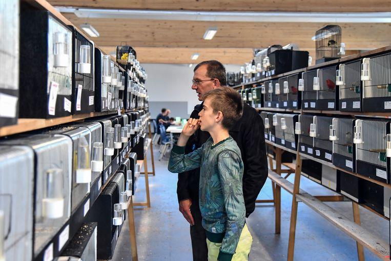 De Zandvogel kan op een geslaagde editie terugblikken, er kwamen redelijk wat bezoekers  naar de tentoonstelling.