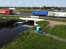 Viaducten A12 en brug A20 worden komende jaren vervangen: 'Impact voor het verkeer zal groot zijn'