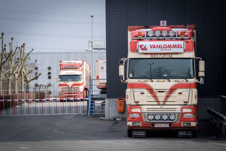 Vrachtwagens bij Vanlommel in Olen. De bewuste partij vlees was op weg naar Euro IDA in Kosovo, dat ook genoemd wordt in het schandaal rond vleesbedrijf Veviba. Beeld BELGA