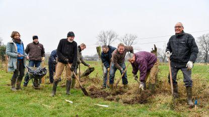 Gemeente houdt zondag plantactie in Tuinlei