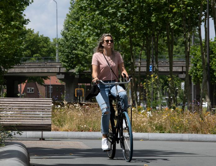 Moeten fietsers in Eindhoven met een app op smartphone wel of niet snel groen licht krijgen?