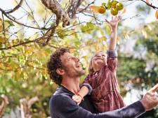 Choisir un arbre pour votre jardin? Suivez ce plan par étapes